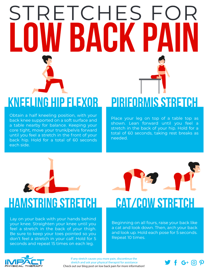 stretches for low back pain